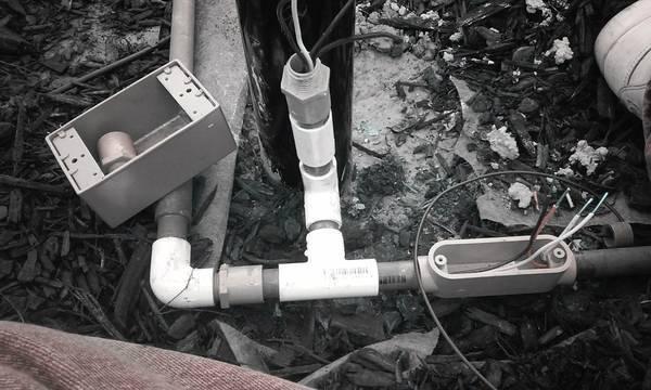electrition1.jpg